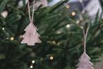 Bæredygtig jul: 5 måder du kan gøre julen mere klimavenlig - thumbnail