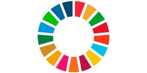 FN's 12 verdensmål